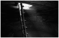 Ladder through a smoke hole in Spruce Tree house. Mesa Verde National Park ( black and white)