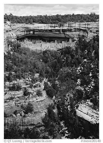 Cliff Palace seen from across valley. Mesa Verde National Park (black and white)
