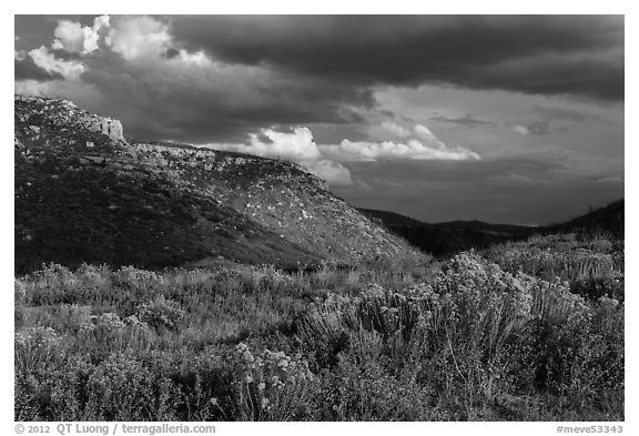 Prater Canyon, afternoon storm. Mesa Verde National Park (black and white)