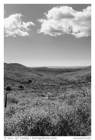 Clouds and landscape with fall colors. Mesa Verde National Park (black and white)