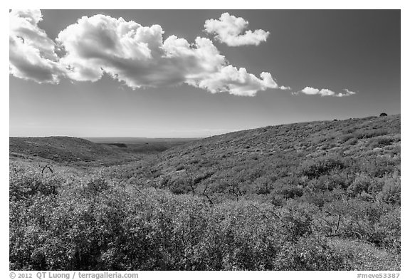 Clouds and slopes with autumn colors. Mesa Verde National Park (black and white)