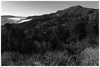 Early morning, Mancos Valley Overlook. Mesa Verde National Park ( black and white)