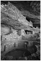Kiva and structures built on ledge, Mug House. Mesa Verde National Park ( black and white)