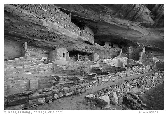 Mug House Ancestral pueblo. Mesa Verde National Park (black and white)