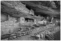 Mug House Ancestral pueblo. Mesa Verde National Park ( black and white)