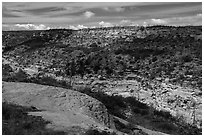 Canyon, Wetherill Mesa. Mesa Verde National Park ( black and white)