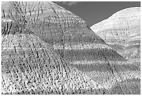 Erosion formations in Blue Mesa. Petrified Forest National Park, Arizona, USA. (black and white)