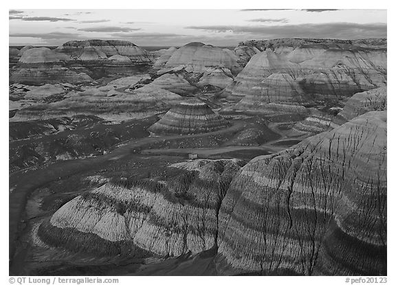 Blue Mesa basin at sunset. Petrified Forest National Park (black and white)