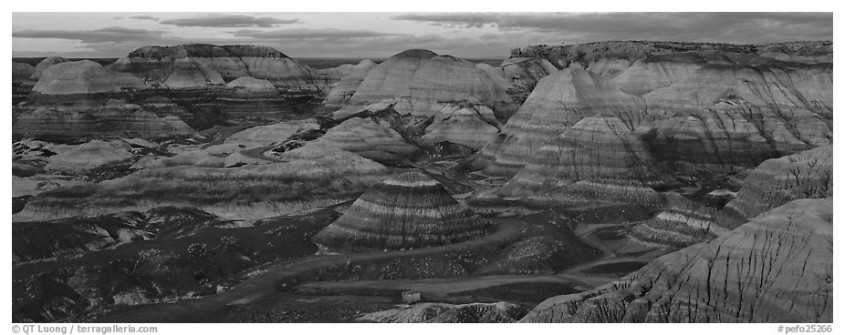 Badland scenery at dusk, Blue Mesa. Petrified Forest National Park (black and white)