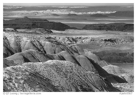 Painted desert seen from Lacey Point, morning. Petrified Forest National Park (black and white)