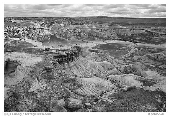 Petrifieds logs and Blue Mesa, mid-day. Petrified Forest National Park (black and white)