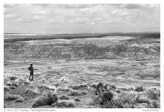 Visitor looking, Painted Desert near Tiponi Point. Petrified Forest National Park (black and white)