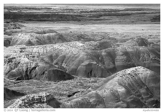 Painted Desert from Tawa Point. Petrified Forest National Park (black and white)