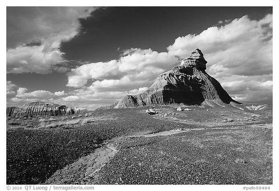 Salomons Throne. Petrified Forest National Park (black and white)