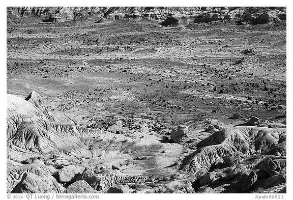 Badlands and petrified wood, Jasper Forest. Petrified Forest National Park (black and white)