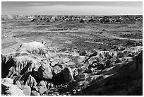 Valley covered with petrified wood, Jasper Forest. Petrified Forest National Park ( black and white)