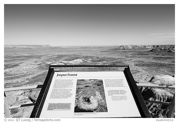 Interpretive sign, Jasper Forest. Petrified Forest National Park (black and white)