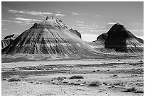 Conical hills carved from blue and red mudstone by erosion. Petrified Forest National Park ( black and white)