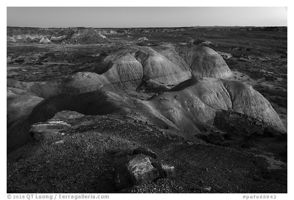 Badlands from Puerco Ridge, dusk. Petrified Forest National Park (black and white)