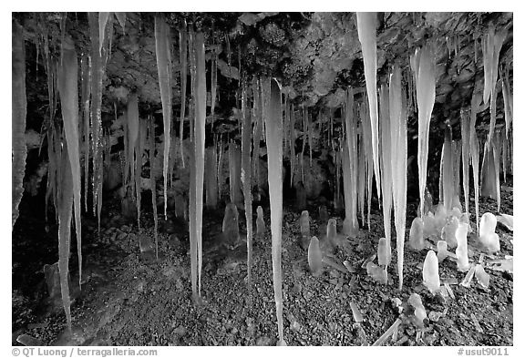 Icicles in Mossy Cave. Bryce Canyon National Park (black and white)