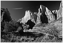 Court of the Patriarchs sandstone towers, morning. Zion National Park ( black and white)