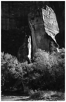 The Pulpit, Zion Canyon. Zion National Park, Utah, USA. (black and white)
