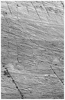 Rock wall with checkboard patterns, Zion Plateau. Zion National Park, Utah, USA. (black and white)
