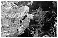 Cliffs near Hidden Canyon from above, late winter afternoon. Zion National Park ( black and white)
