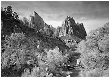 Court of the Patriarchs and Virgin River, afternoon. Zion National Park ( black and white)