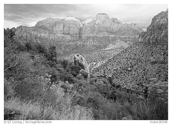 Towers of the Virgin in rainy weather. Zion National Park (black and white)
