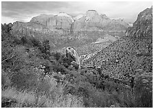 Towers of the Virgin in rainy weather. Zion National Park ( black and white)