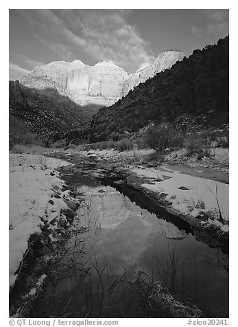 Pine Creek and Towers of the Virgin, sunrise. Zion National Park (black and white)