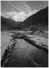 Pine Creek and Towers of  Virgin, sunrise. Zion National Park, Utah, USA. (black and white)