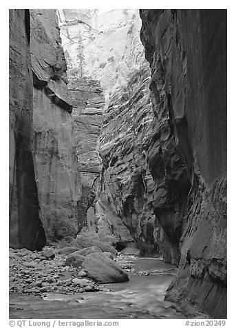 Virgin River and rock walls, the Narrows. Zion National Park (black and white)