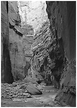 Virgin River and rock walls,  Narrows. Zion National Park, Utah, USA. (black and white)