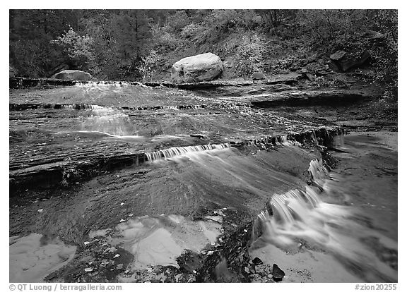 Terraced cascades in autumn, Left Fork of the North Creek. Zion National Park (black and white)