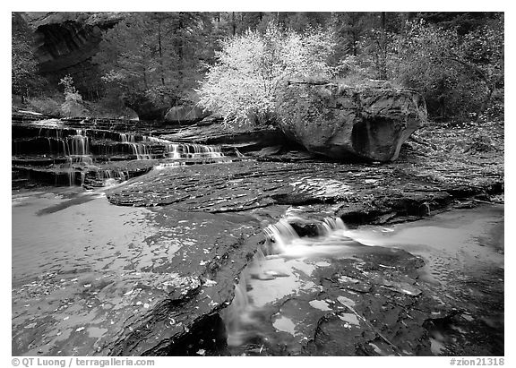 Creek flowing over travertine terraces, Left Fork of the North Creek. Zion National Park (black and white)
