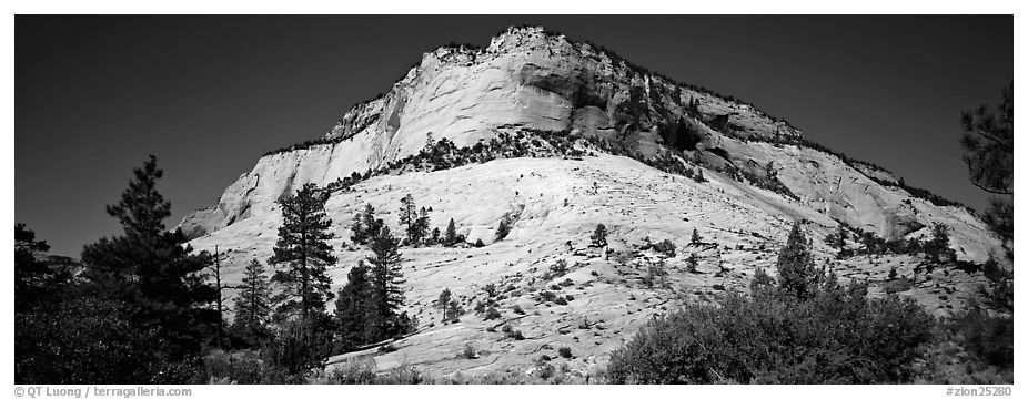 Sandstone bluff, Zion Plateau. Zion National Park (black and white)