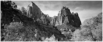 Zion Canyon scenery. Zion National Park (Panoramic black and white)