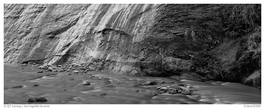 Wet gorge wall and Virgin River. Zion National Park (black and white)