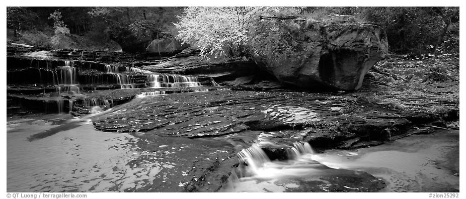 North Creek cascading over terraces in autumn. Zion National Park (black and white)
