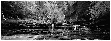 Autumn landscape with terraces flowing over creek. Zion National Park (Panoramic black and white)