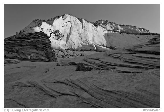 Swirls and cliffs at sunrise, Zion Plateau. Zion National Park (black and white)