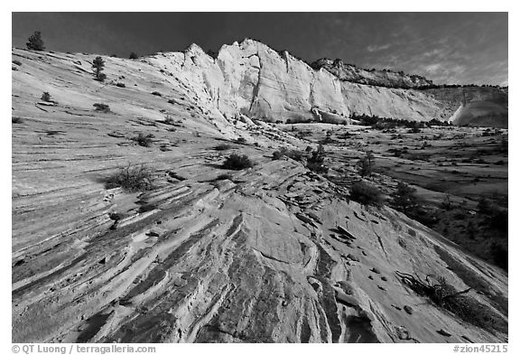 Pink sandstone swirls and white cliff. Zion National Park (black and white)