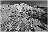 Pink sandstone swirls and white cliff. Zion National Park ( black and white)
