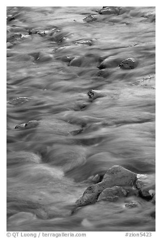 Water flowing over stones in Virgin River. Zion National Park (black and white)