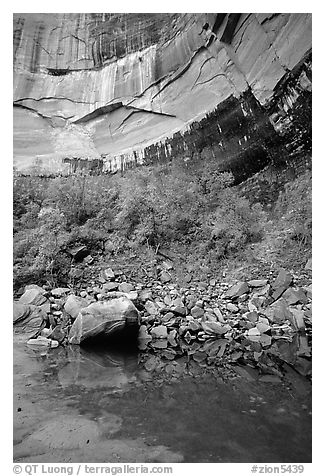 Multi-colored rock walls above the Third Emerald Pool. Zion National Park (black and white)