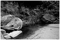 Sandstone boulders in Third Emerald Pool. Zion National Park, Utah, USA. (black and white)
