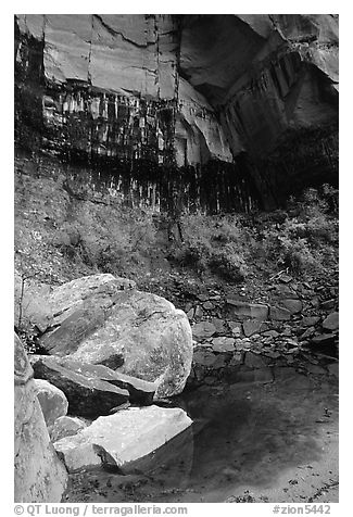 Boulders in  Third Emerald Pool. Zion National Park (black and white)