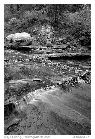 Travertine terraced cascades in autum, Left Fork. Zion National Park (black and white)